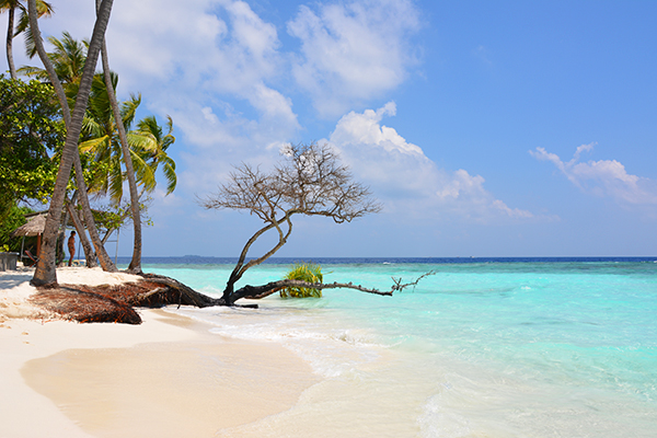 Maldives-Kuda-Bandos-Beach